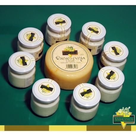 Pack 20 yogures de 125ml y 1 queso